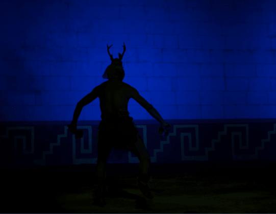 Sombra de la danza del venado
