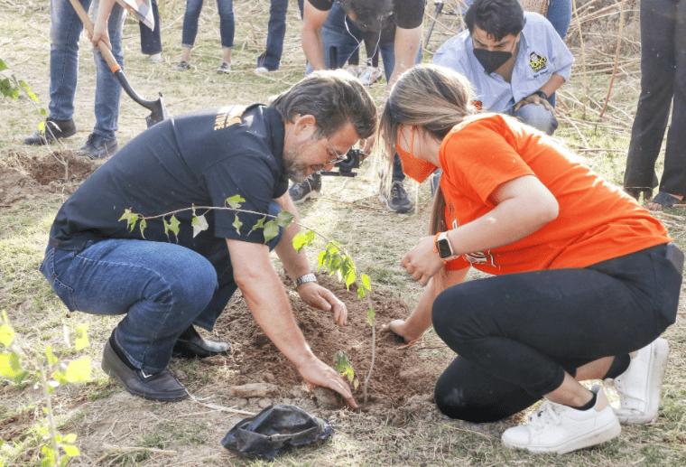 Ricardo Bours plantando un árbol